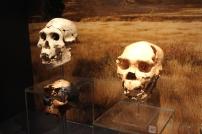 Ashmolean Museum