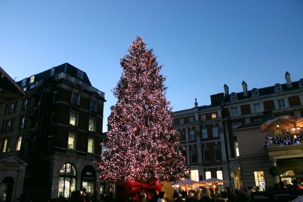 Árvore de Natal mais enorme que eu já vi!