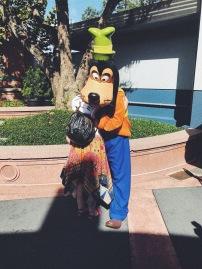 Goofy @ Hollywood Studios