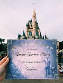 Certificado de conclusão do programa